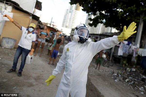 英媒:转基因蚊子或系寨卡病毒爆发的罪魁祸首 - 中国日报网