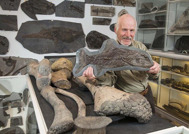 英男子收藏2500件化石标本 被迫转入博物馆展览