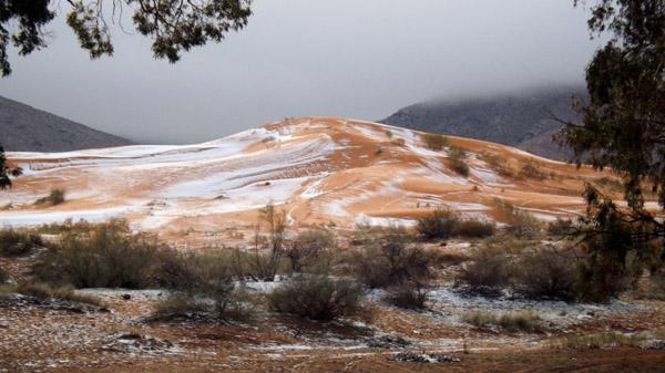 太稀罕!撒哈拉沙漠37年来首迎降雪 - 中国日报网