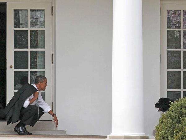 特朗普或将成为近130年来首位没有宠物狗的美国总统 - 中国日报网