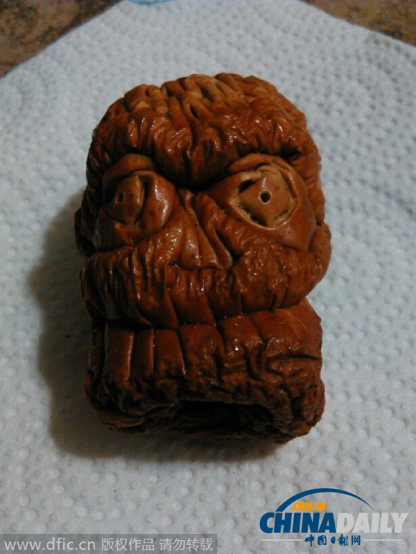 奇葩艺术:手工雕刻苹果干瘪酷似骷髅