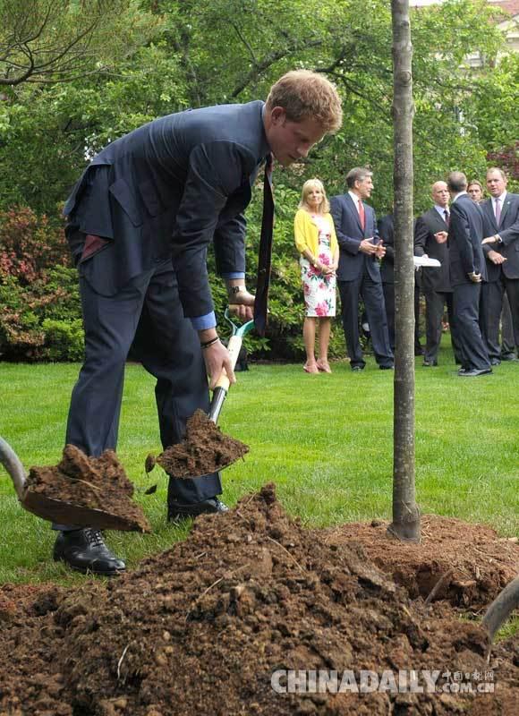 英国哈里王子在英国驻美国大使馆内会见了受伤士兵,并亲自植树.