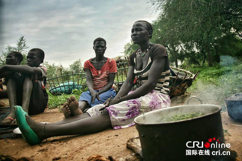 南苏丹人道危机:煮树叶吃维持生存(组图)