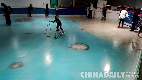 日本滑冰场冰面下冻5000条鱼 创意过头惹众怒