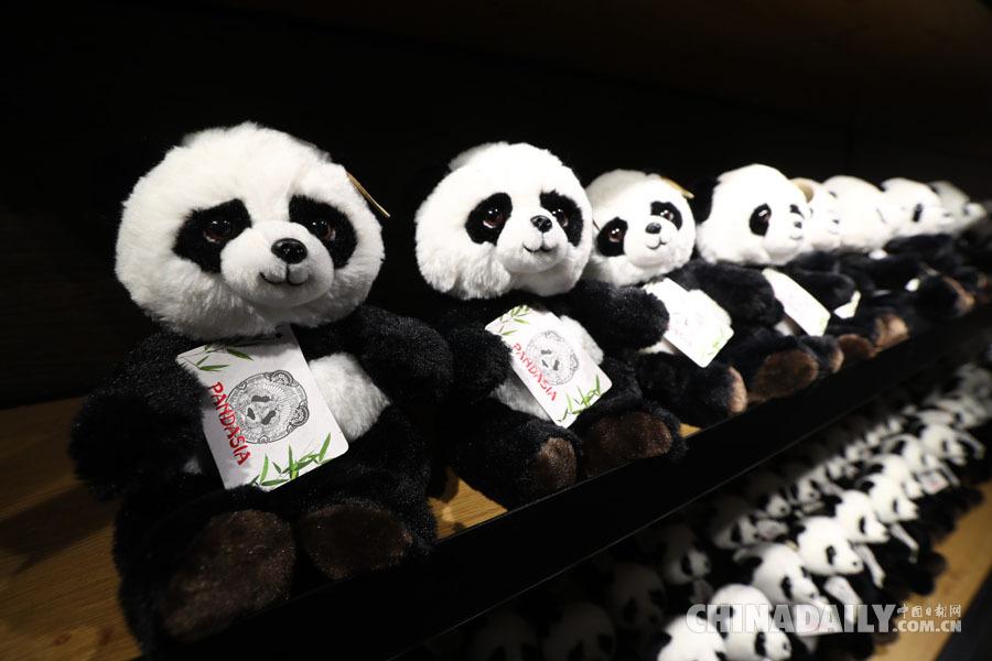 嫩市欧维汉兹动物园熊猫馆附属商店拍摄的熊猫纪念品