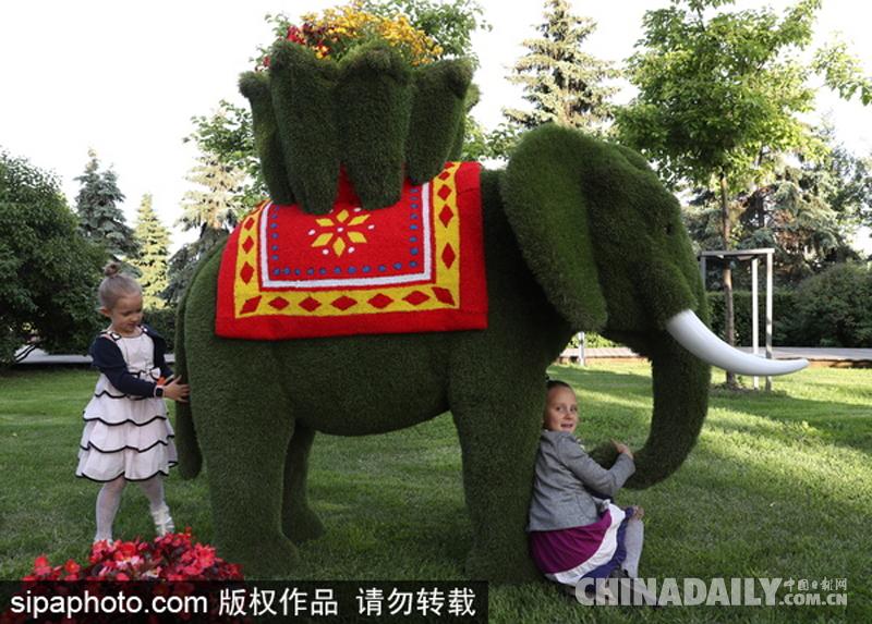 莫斯科举办第6届花展 各式花草造型吸睛