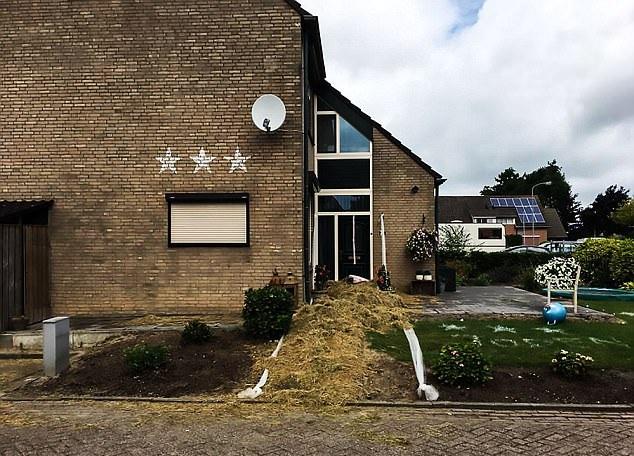 """惊呆!荷兰新婚夫妇回家后发现房子变成""""动物园"""""""