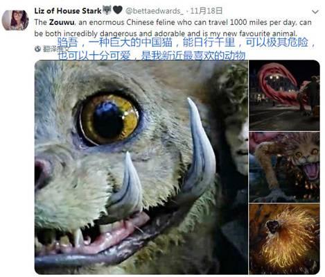 【中国那些事儿】上古神兽驺吾全球圈粉无数 中国神话成外国电影新灵感富矿